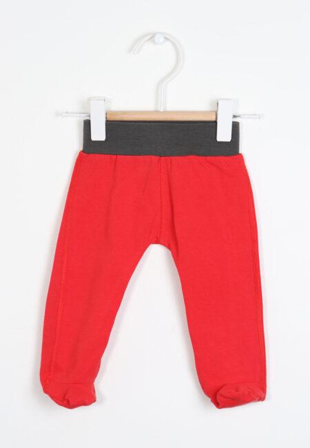 Rood broekje, Mambotango, 50