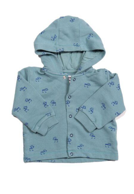 Appelblauwzeegroene hoodie, PF, 74